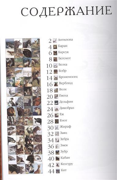 50. Самые известные животные. Иллюстрированная энциклопедия