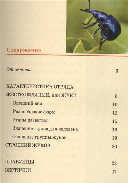 Жуки: Карманный справочник