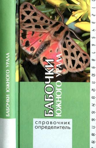 Бабочки южного Урала