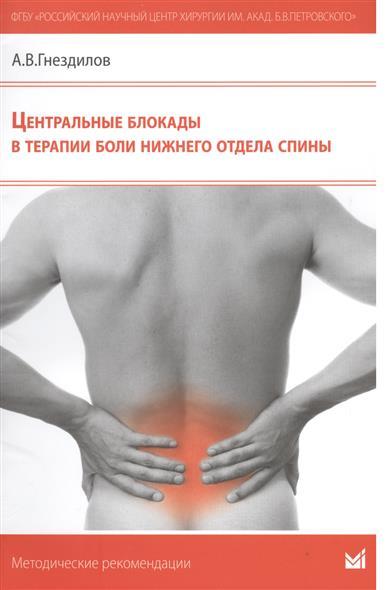 Центральные блокады в терапии боли нижнего отдела спины. Методические рекомендации