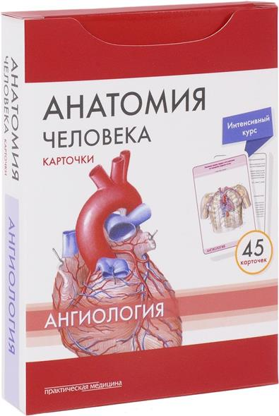 Анатомия человека. Ангинология. 45 карточек