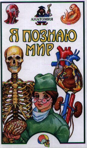 ЯПМ Анатомия