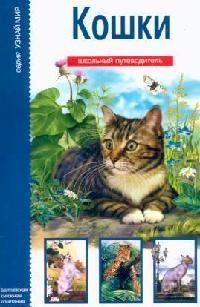 Кошки Школьный путеводитель