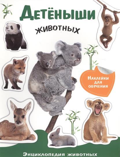 Детеныши животных. Энциклопедия животных с наклейками