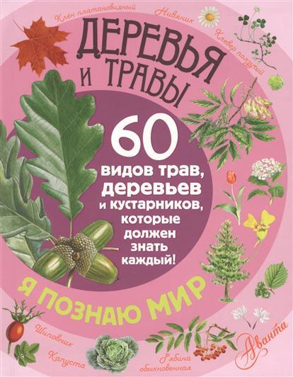 Деревья и травы. 60 видов трав, деревьев и кустарников, которые должен знать каждый