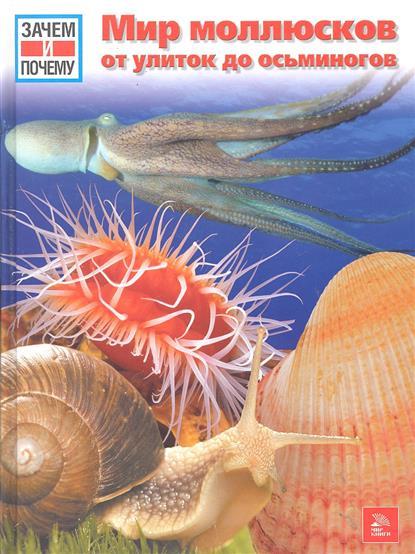 Мир молюсков От улиток до осьминогов
