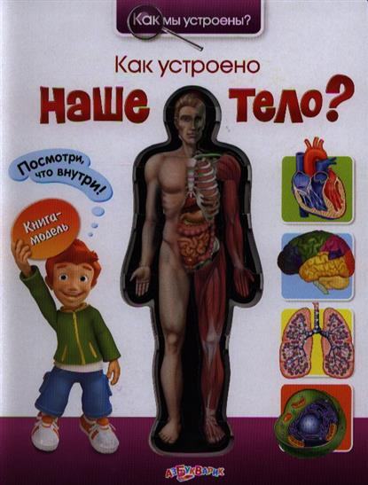 Как устроено наше тело?