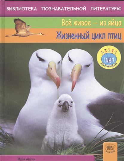 Жизненный цикл птиц