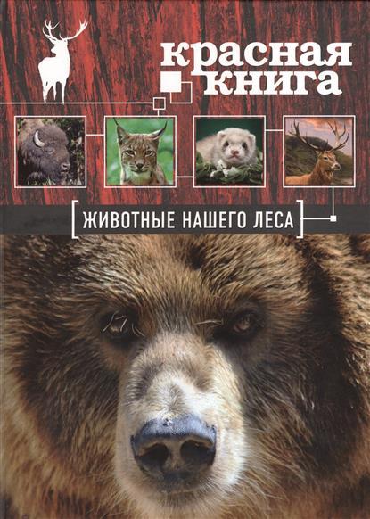 Красная книга. Животные нашего леса