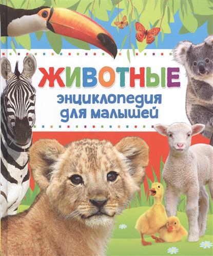 Животные. Энциклопедия для малышей