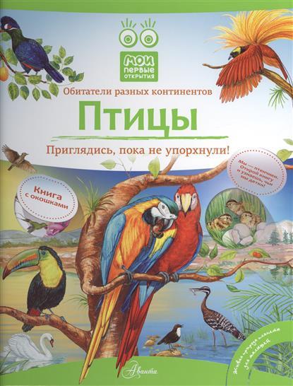 Птицы. Приглядись, пока не упорхнули! Книга с окошками