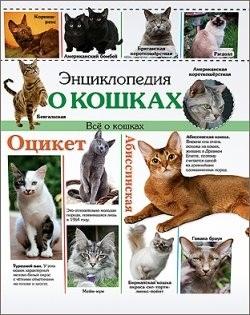 Энциклопедия о кошках. Все о кошках