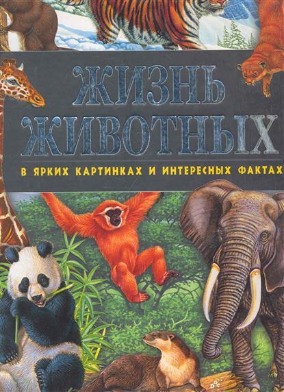 Жизнь животных в ярких картинках и интересных фактах