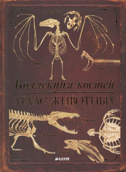 Коллекция костей. Атлас животных