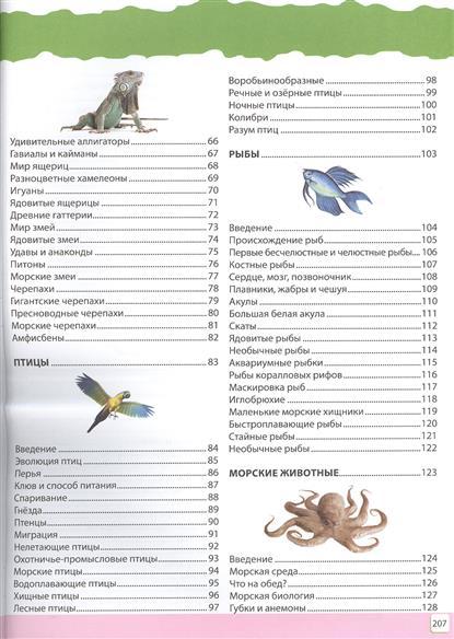 Замечательная энциклопедия животных