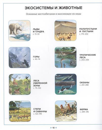 Иллюстрированная энциклопедия животных