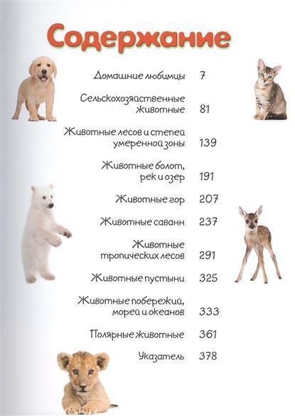 Моя большая книга о детенышах животных. 1000 фотографий