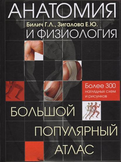 Анатомия и физиология. Большой популярный атлас. Более 300 наглядных схем и рисунков
