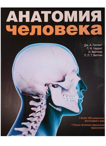 Анатомия человека. Цветной атлас и учебник анатомии