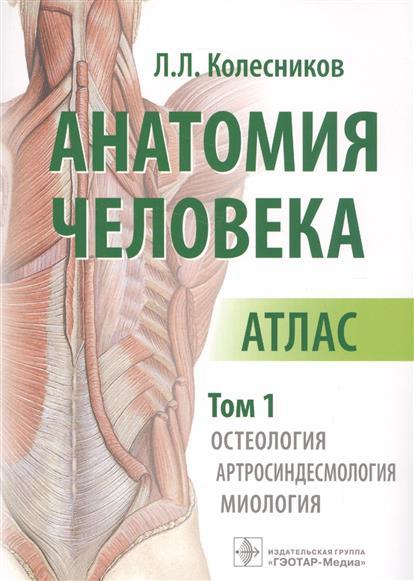 Анатомия человека. Атлас. В 3 -х томах. Том 1. Остеология. Артросиндесмология. Миология
