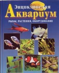 Аквариум Рыбы растения оборудование аквариума