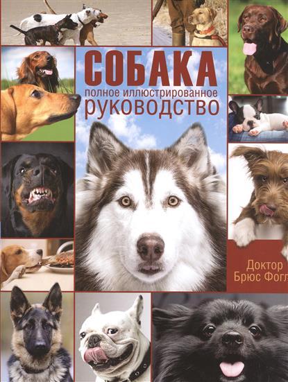 Собака. Полное иллюстрированное руководство. Забота о вашей собаке