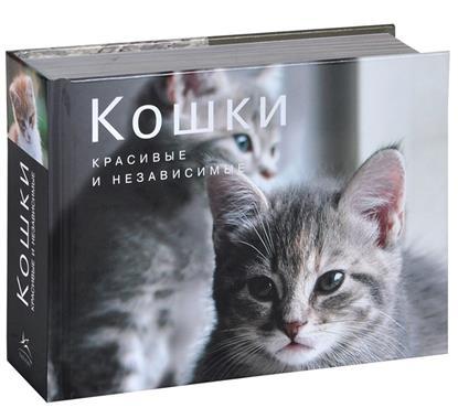 Кошки. Красивые и независимые