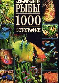 Аквариумные рыбы 1000 фотографий Альбом