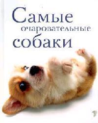 Самые очаровательные собаки