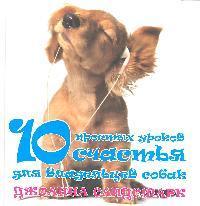 10 простых уроков счастья для владельцев собак