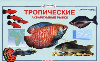 Тропические аквариумные рыбки