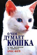 О чем думает кошка и как научиться ее понимать