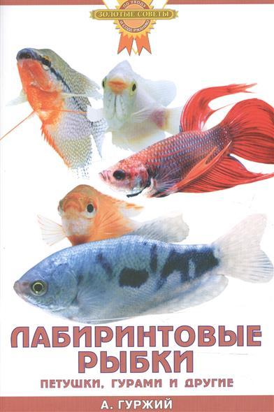 Лабиринтовые рыбки Петушки гурами и др.