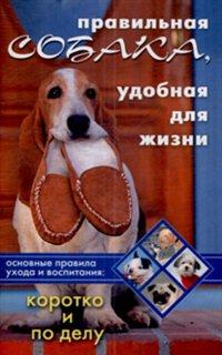 Правильная собака удобная для жизни Коротко и по делу