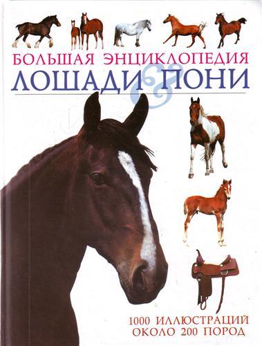Лошади & пони Большая энц.