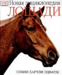 Лошади Новая энциклопедия