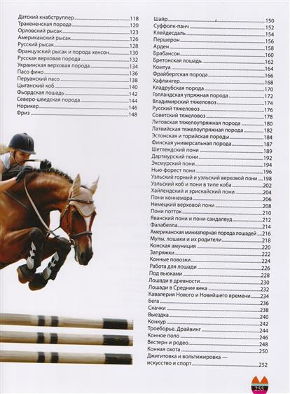 Большая энциклопедия: Лошади