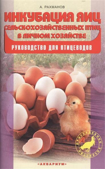 Инкубация яиц с/х птиц в личном хозяйстве