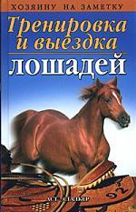 Тренировка и выездка лошадей