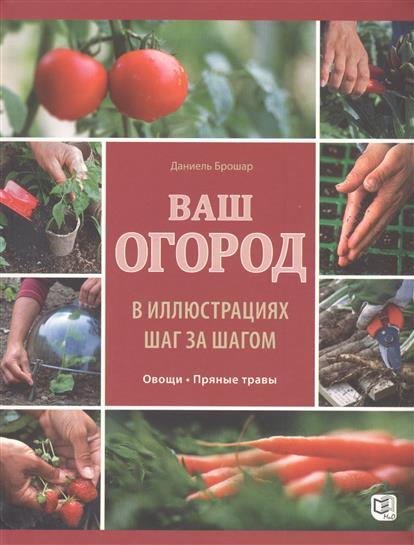 Ваш огород в иллюстрациях шаг за шагом: Овощи. Пряные травы