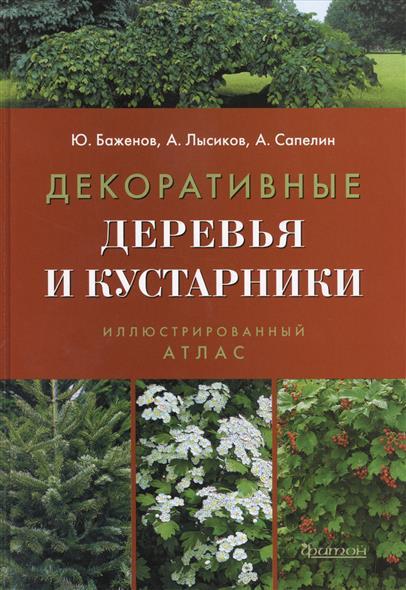 Декоративные деревья и кустарники