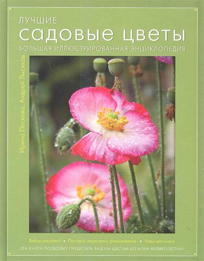 Лучшие садовые цветы. Большая иллюстрированная энциклопедия. Выбор растений. Посадка, пересадка, размножение. Виды цветников