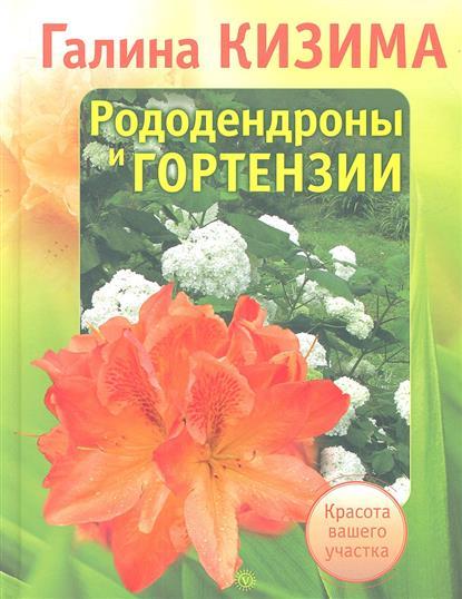Рододендроны и гортензии. Красота вашего участка