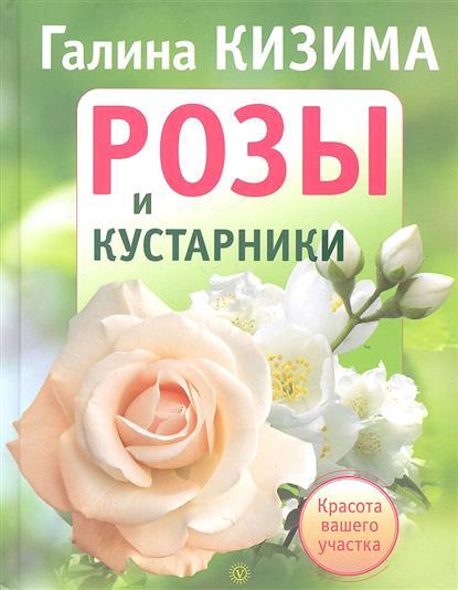 Розы и кустарники. Красота вашего участка
