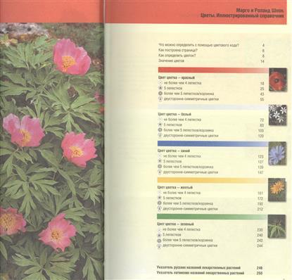 Цветы. Иллюстрированный справочник. Более 350 цветов для украшения сада и ландшафтного дизайна