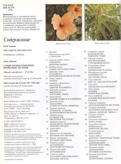 Самые распространенные комнатные растения