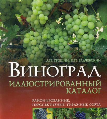Виноград Илл. каталог Районированные перспект. тиражные сорта