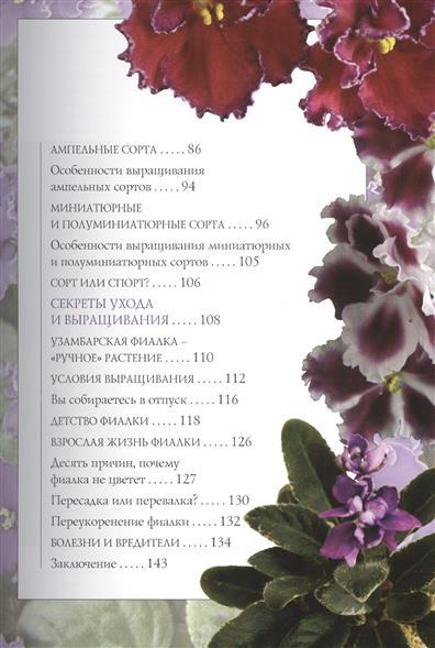 Узамбарские фиалки