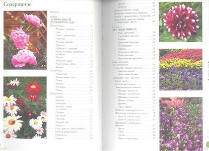 Цветы в дизайне сада. Искусство создания стильных композиций