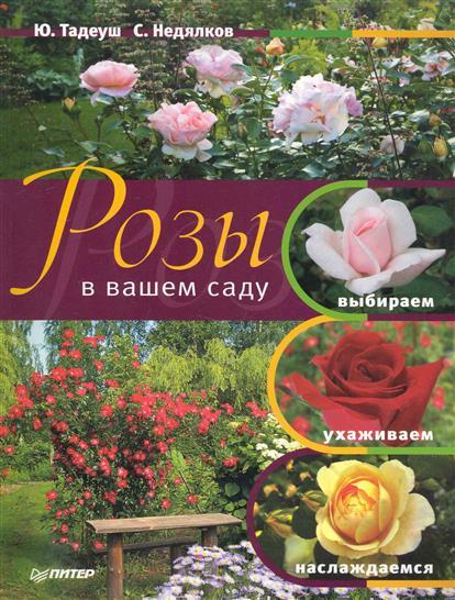 Розы в вашем саду